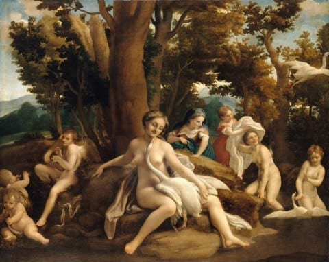 leda and the swan correggio